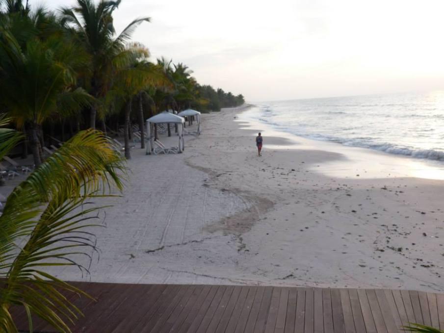 champoton-plage-palmiers