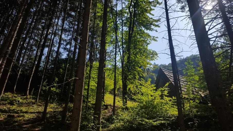 Où dormir à Bled ?